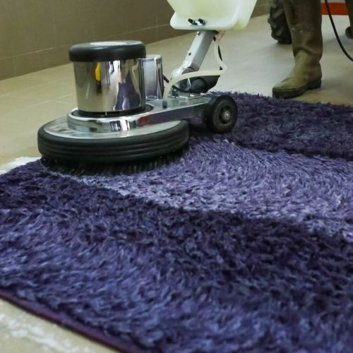 Cleaning Carpets